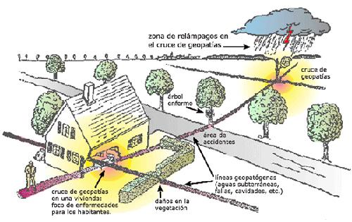 La Geobiología, una breve introducción